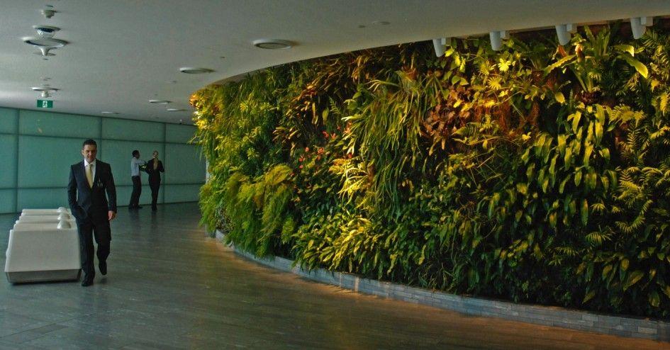 Garden, Office Interior The Most Pretty Gardenia Vertical Garden Green  Plants Fresh Air Natural Health