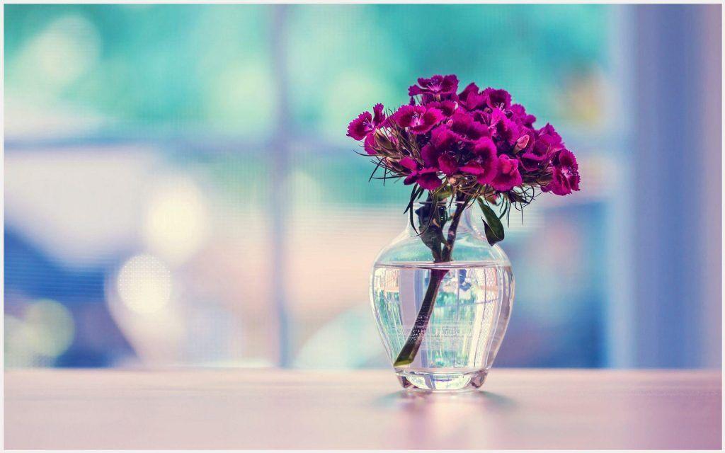 Flower Netx To Vase Wallpaper