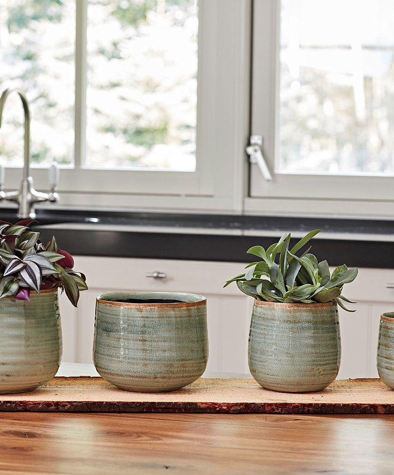 Plant De Menthe En Pot ts® flower pot iris mint | bloempot, groen, planten