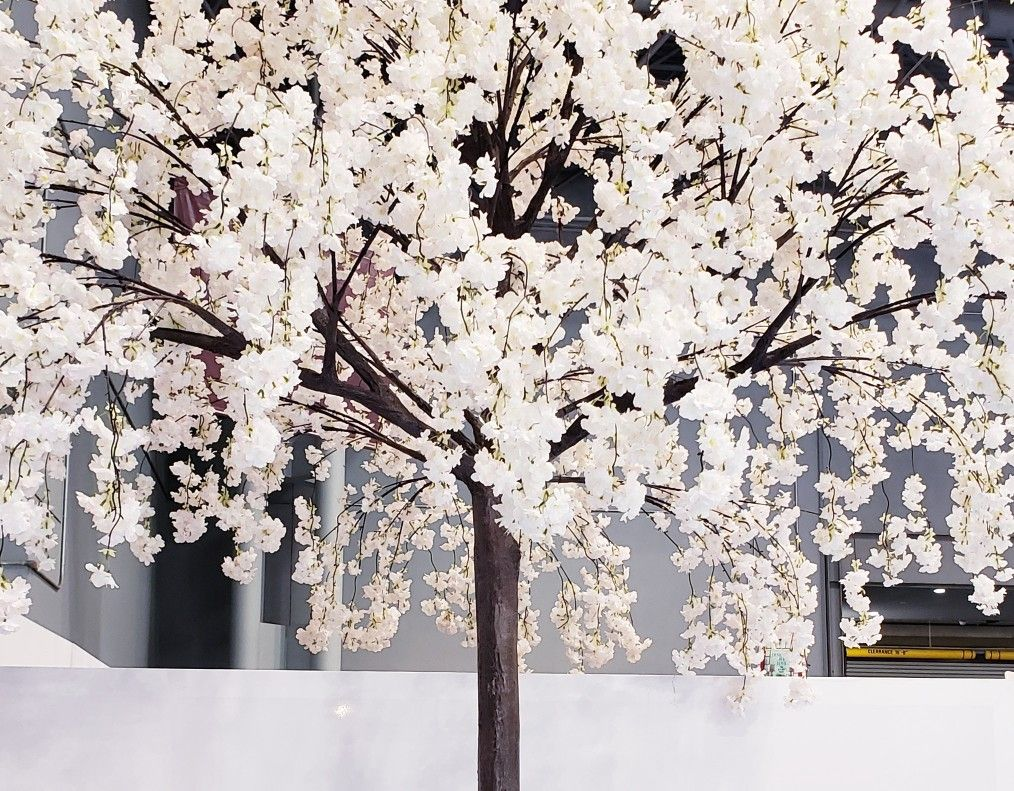 Artificial Weeping Cherry Blossom Tree With Interchangeable Branches Cherry Blossom Tree Blossom Trees Cherry Blossom