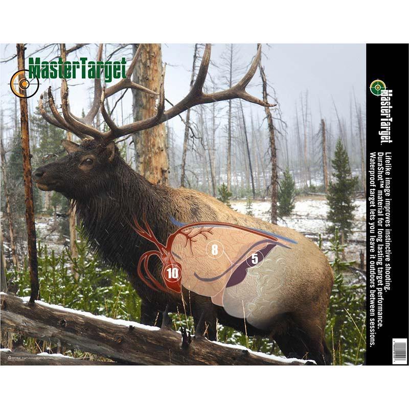 Shot Placement: Elk   Archery class   Pinterest   Elk, Chart and Elk ...