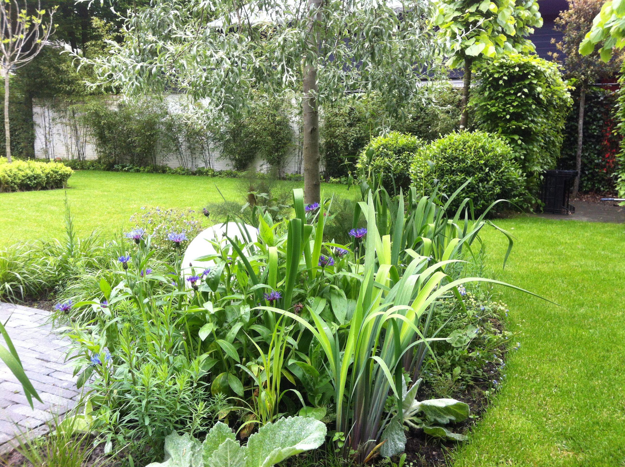 Secret Gardens, Tes
