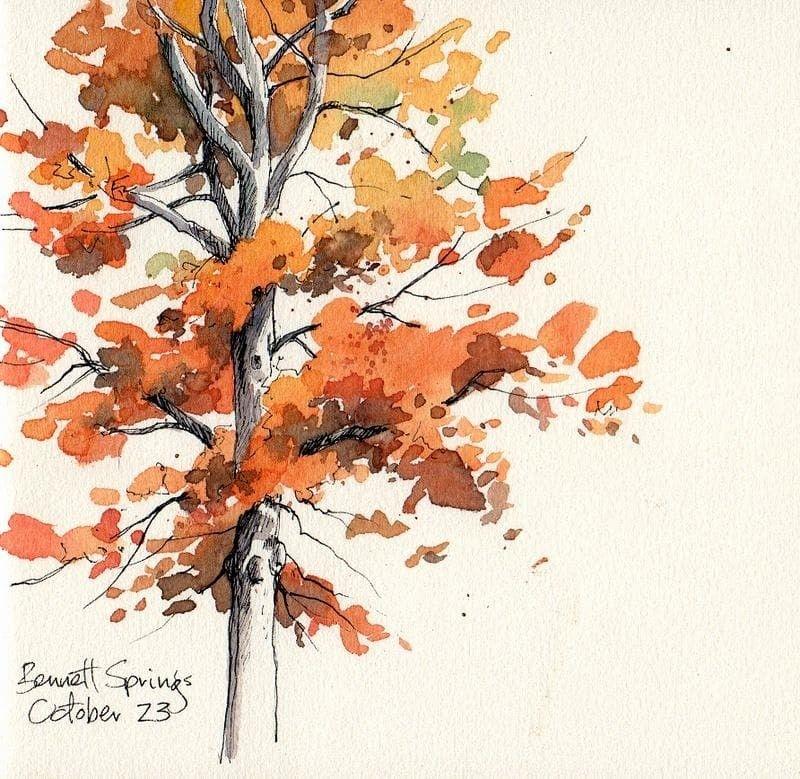 Autumn Tree Watercolor Trees Watercolor Art Fall Watercolor