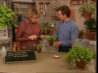 Watch Martha Stewart's How To Propagate Ivy Video. Get more step-by-step instructions and how to's from Martha Stewart.