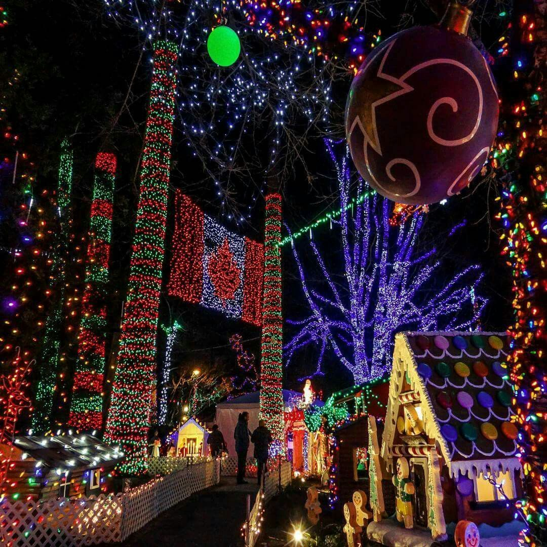 Christmas Lights In Vancouver Dec 2016 Best Places To Travel Vancouver Places To Travel