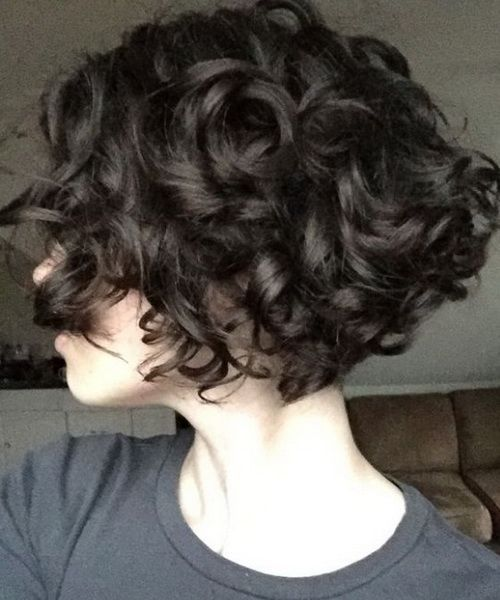 2017 Short Bob Haircuts For Curly Thick Hair Thick Hair Styles Short Curly Hairstyles For Women Short Curly Haircuts