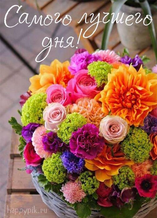 Dobroe Utro Krasivye Kartinki Nebolshie Cvetniki Sedobnye