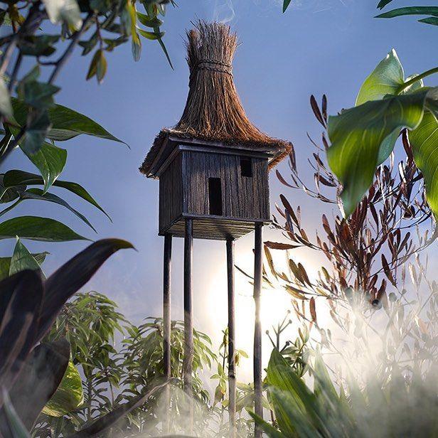 Jungle living . Set design : Hattie Newman #dreamhomes #stiltwalker #tinyhouse by lukejameskirwan