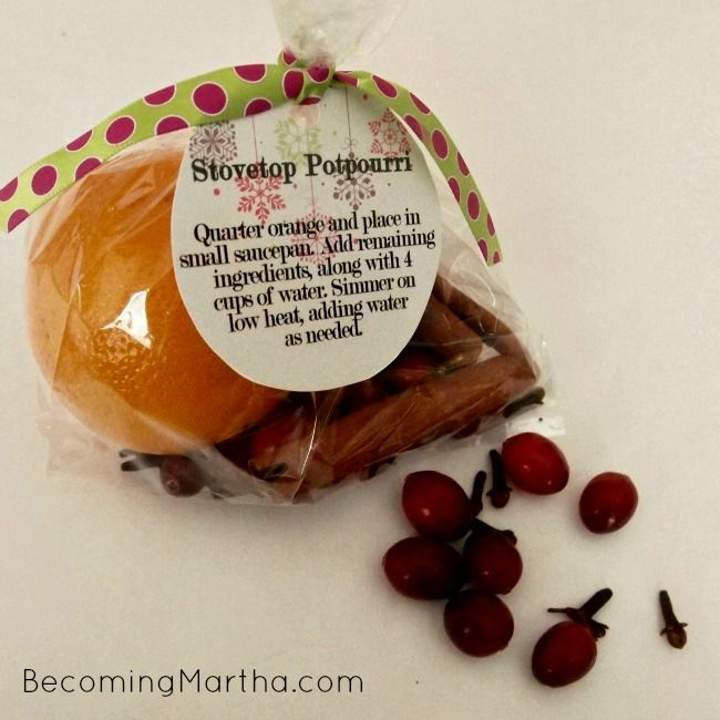 37 Quickest Diy Gifts You Can Make: DIY Stovetop Potpourri Gift With Printable Tag