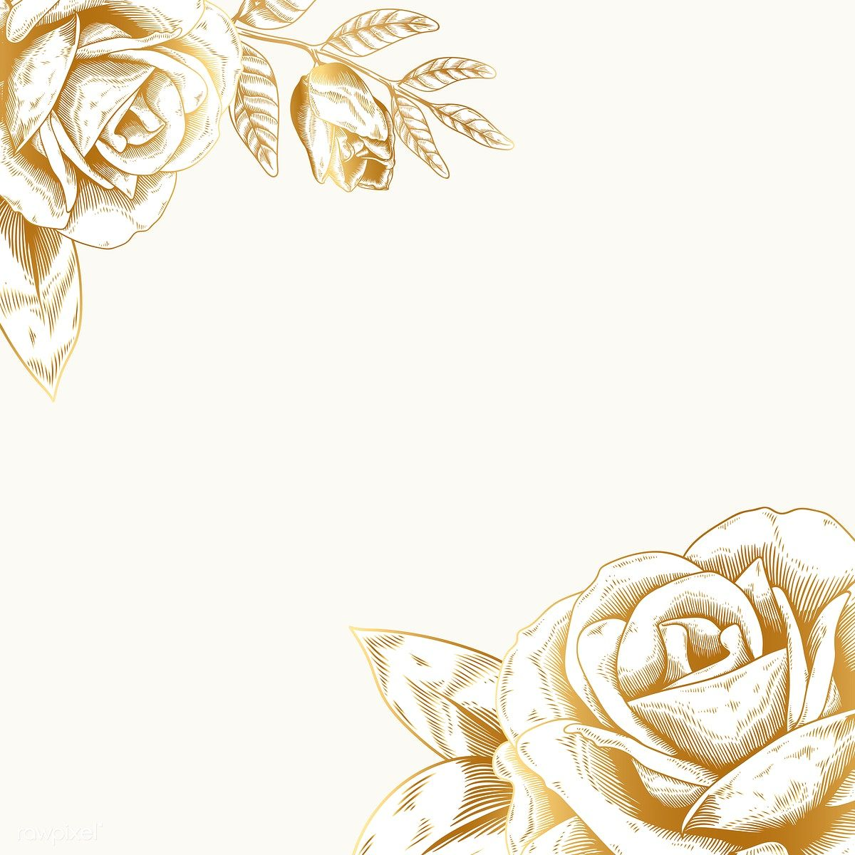 Hand Drawn Rose Framed Background Vector Free Image By Rawpixel
