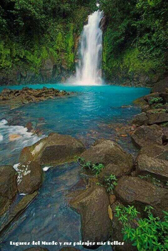 Rio Celeste, Costa Rica @Melissa Squires Squires Squires Squires Smith we goin!!
