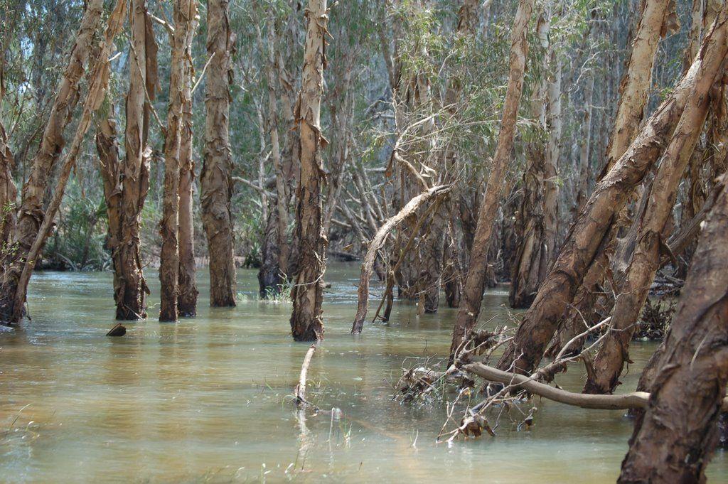 Drysdale River WA 6740, Australia