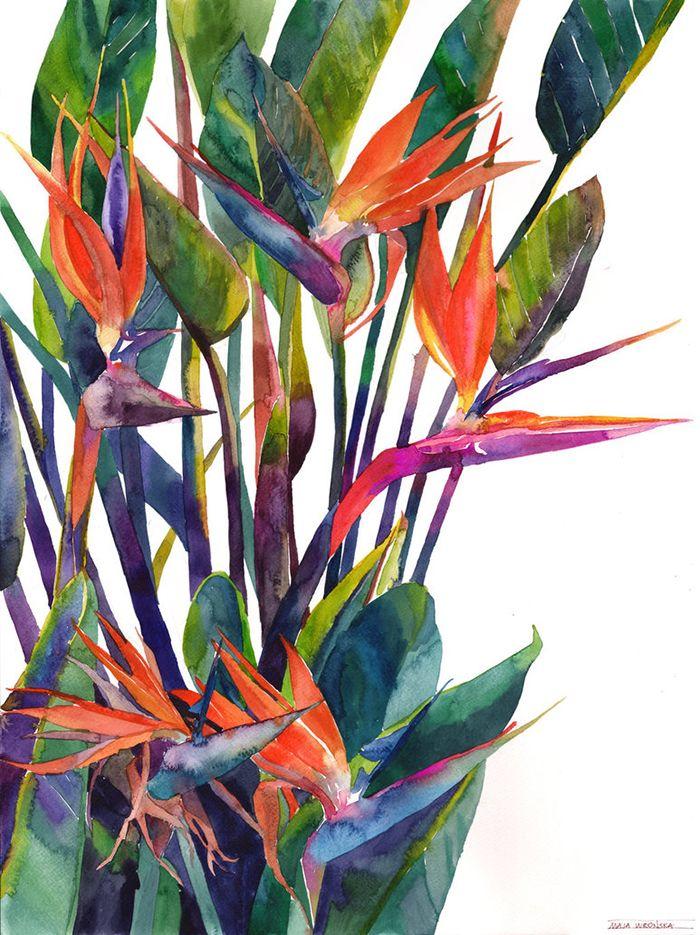 La Jungle En Couleurs Aquarelle Avec Images Peinture Fleurs