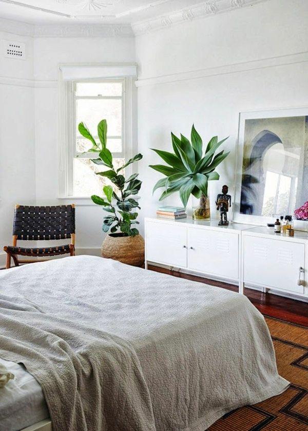 Lovely Schlafzimmer Pflanzen 2 #4: Pflanzen Im Schlafzimmer Zimmepflanzen Pflegeleicht