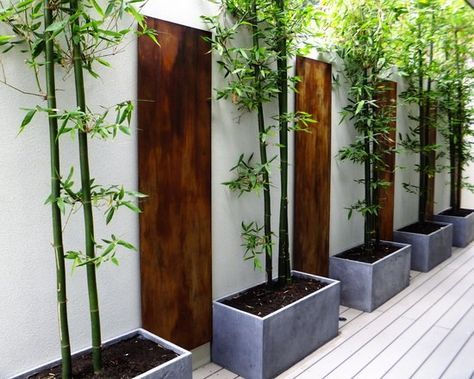 61 Ideen Für Bambus Im Garten   Als Sichtschutz Oder Deko