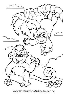 Ausmalbild Affen Ausmalbilder Tiere Zum Ausmalen Ausmalen