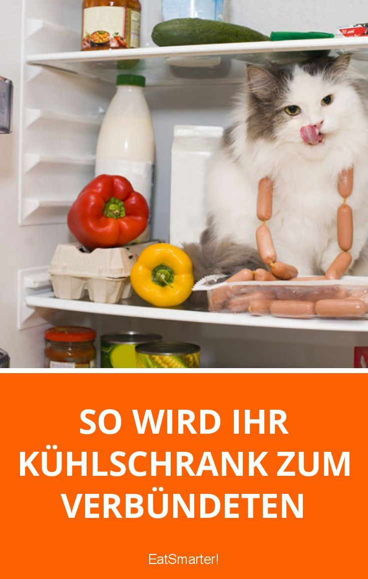 So wird Ihr Kühlschrank zum Verbündeten | eatsmarter.de