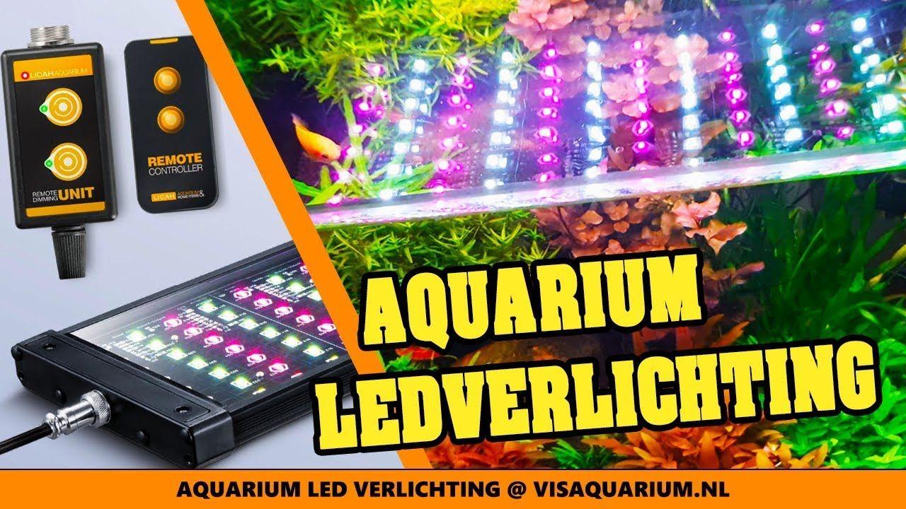 aquarium led verlichting unboxing licah ldp 400 planten led