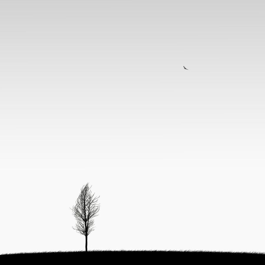 """""""Alone"""" by Hossein Zare, via 500px."""