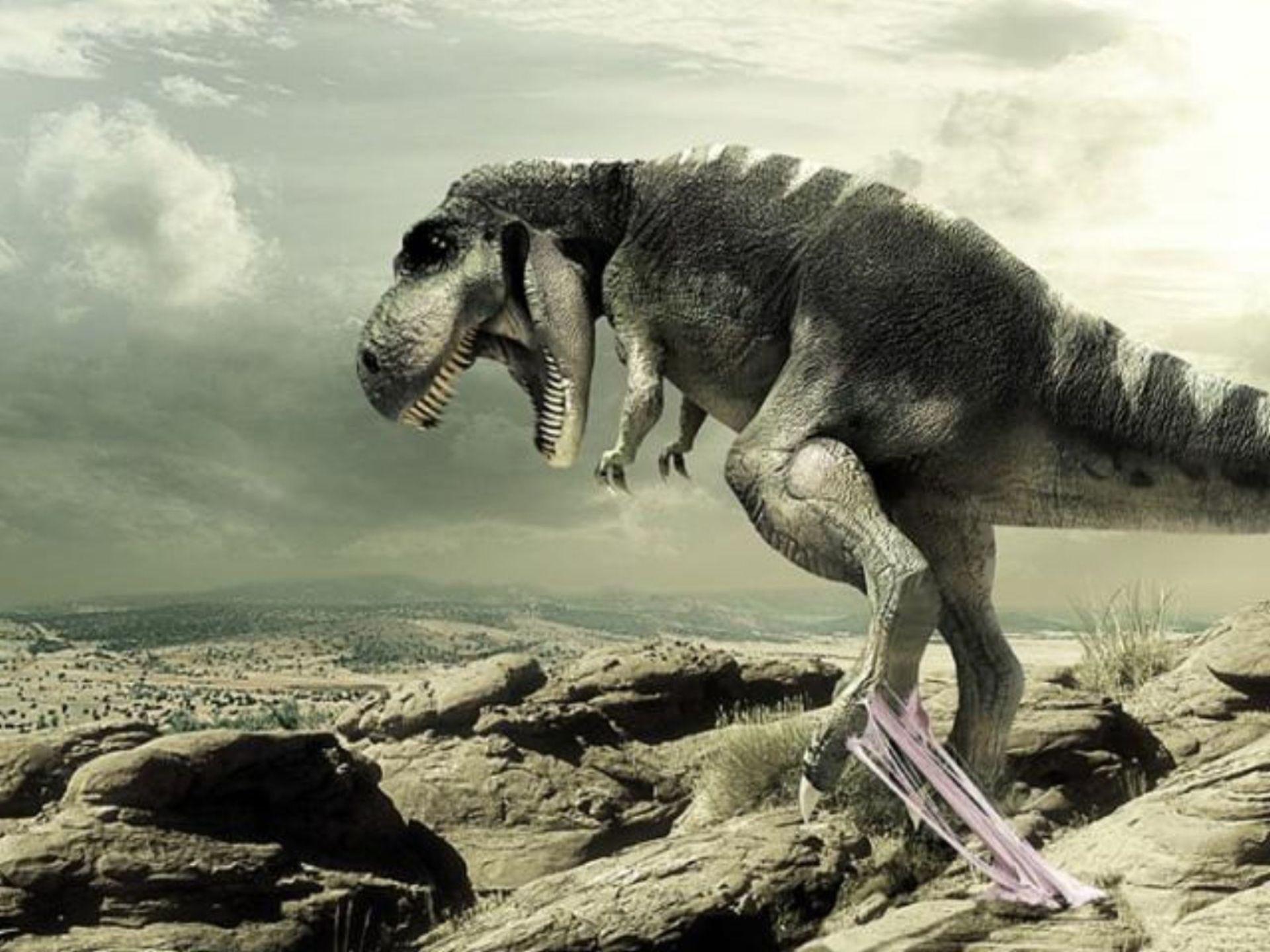 День, динозавры картинки приколы