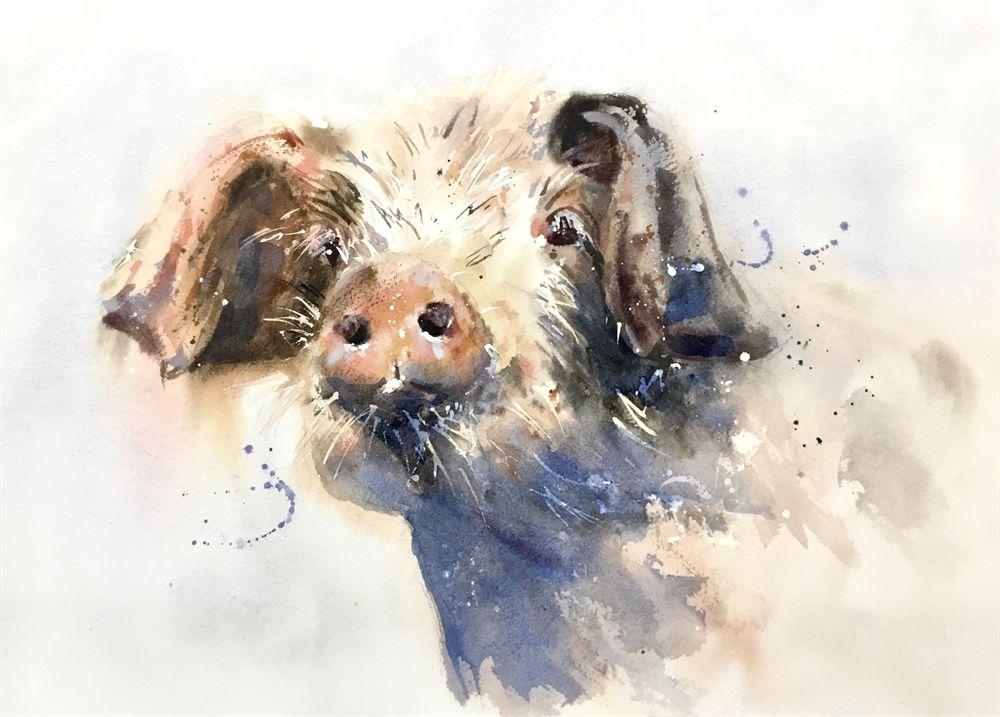 Scout Watercolour By Karen Thomas Animal Paintings