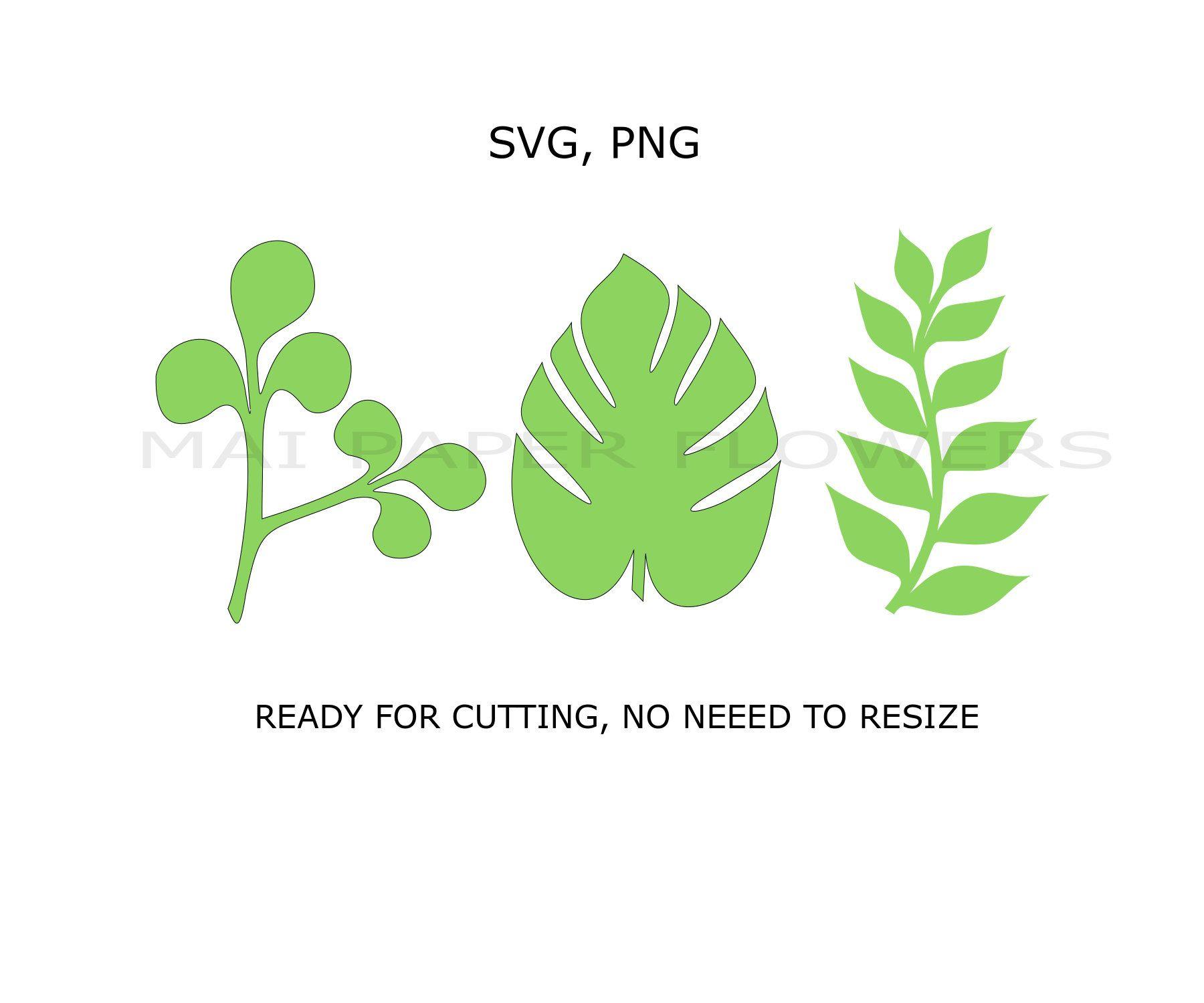 Paper Flower Leaf Template Svg Png Pdf Leaf Svg Files Leaf Svg