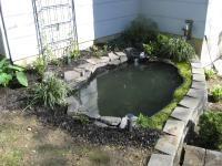 Shop Maccourt 275 Gallon Heavy Duty Polyethylene Pond Liner At Lowes Com Pond Lowes Home Improvements Backyard