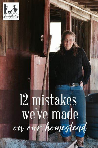Mistakes around a homestead are costly. Here are our top twelve for you to avoid... from #freerangingchicken to #maplesyrup to #dogtraining to #woolrugcleaning, it's all here and more.Mistakes #around #a #homestead #are #costly. #Here #are #our #top #twelve #for #you #to #avoid... #from ##freerangingchicken #to ##maplesyrup #to ##dogtraining #to ##woolrugcleaning, #it's #all #here #and #more. #twelve