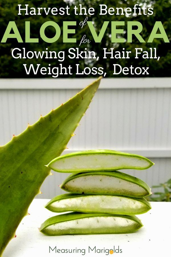 How to Harvest the Benefits of Aloe Vera for Glowing Skin Hair Loss Weight Loss Detox and more