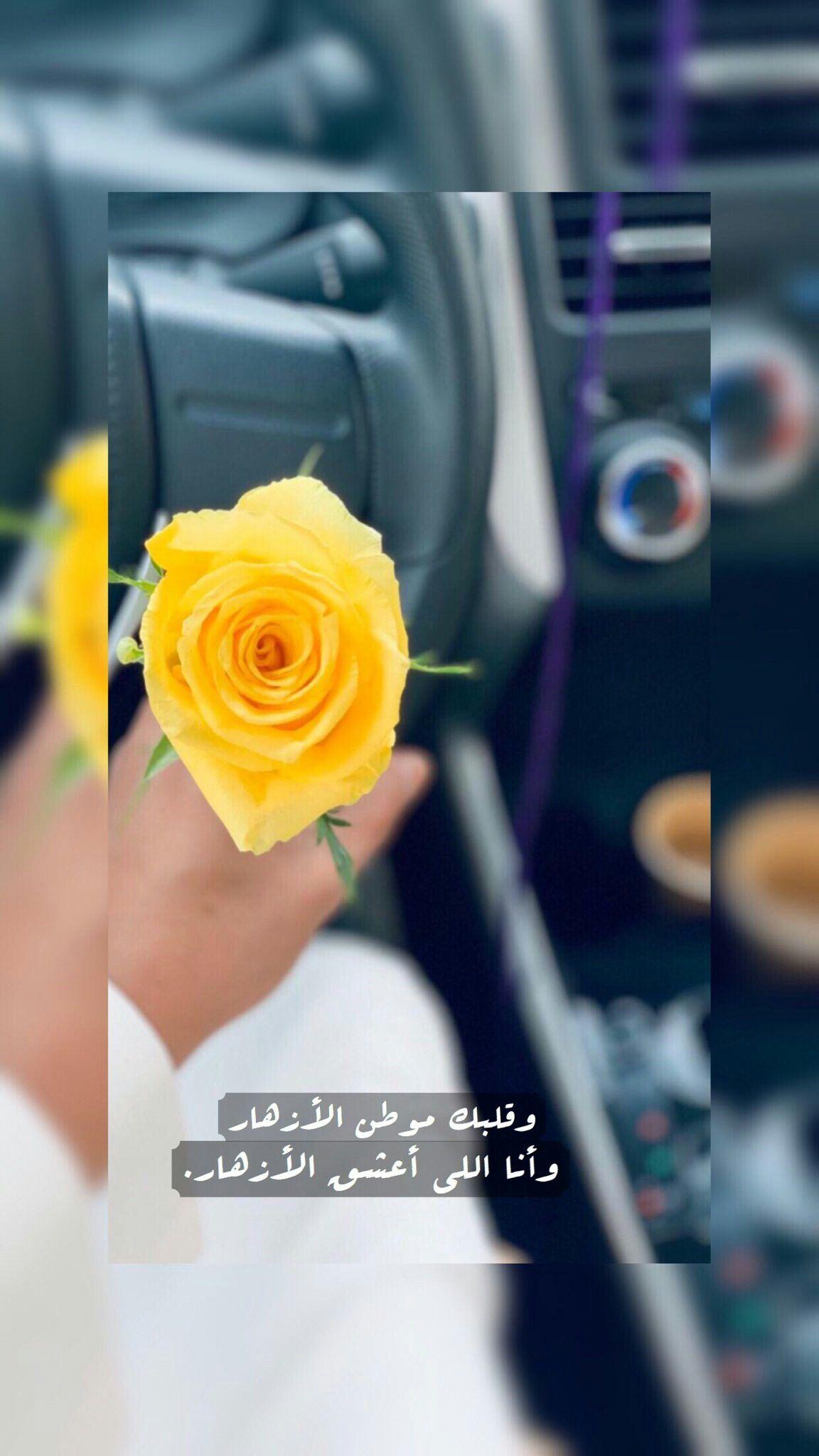 Pin By ظ ل On I Love It My Love Love