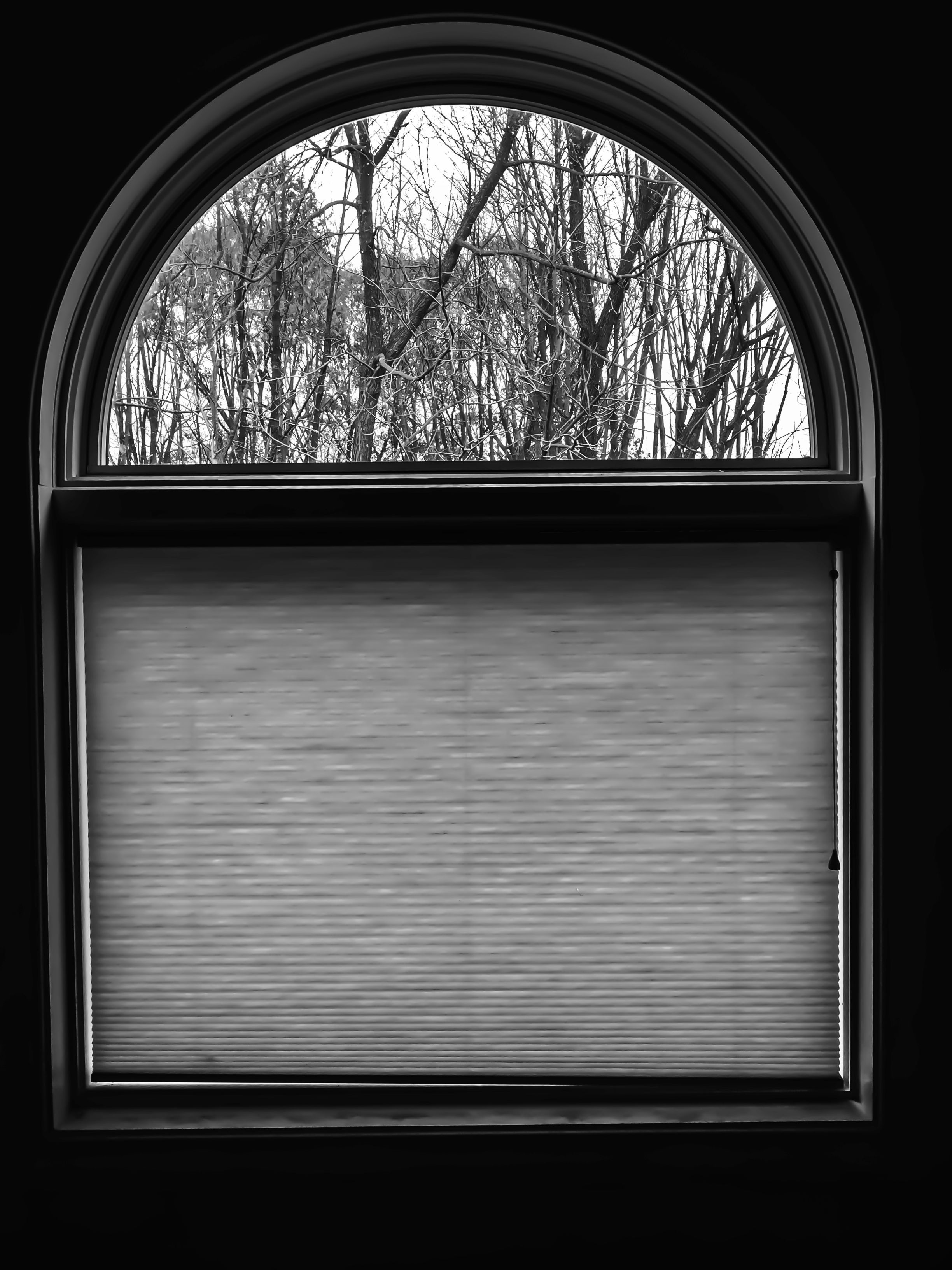 She Came In Through The Bathroom Window Bathroom Windows Windows Photography