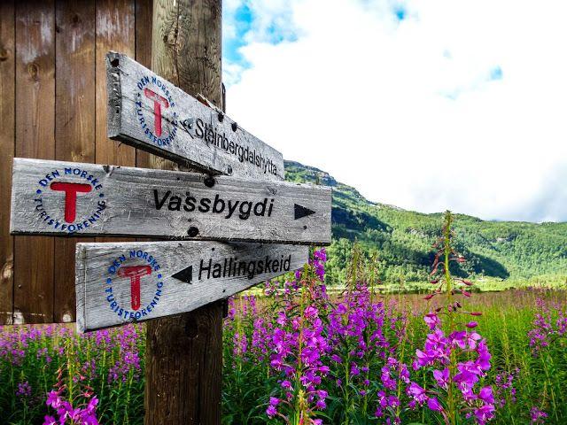 Life Abundant Blog - Gudvagen, Norway,   Aurlandsdalen Valley, Best places to visit in Gudvagen, Norway Blog, Norway Travel Tips, Norway Hike, Gudvagen Travel