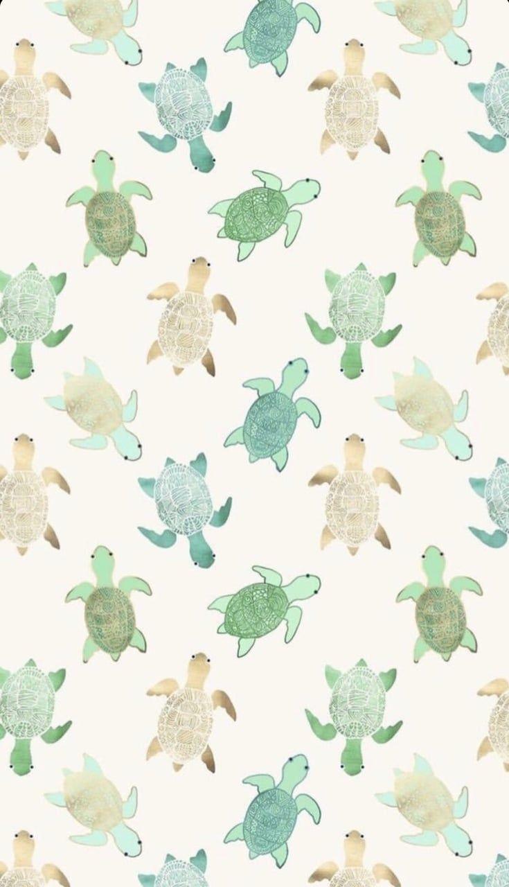 Turtles  on We Heart It