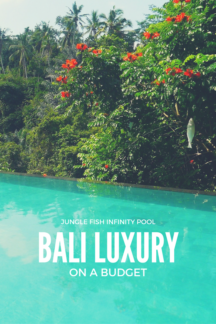 Want to spend a day hanging out in a beautiful infinity pool overlooking the jungle without splashing out on a luxury resort stay? In Bali it's possible!