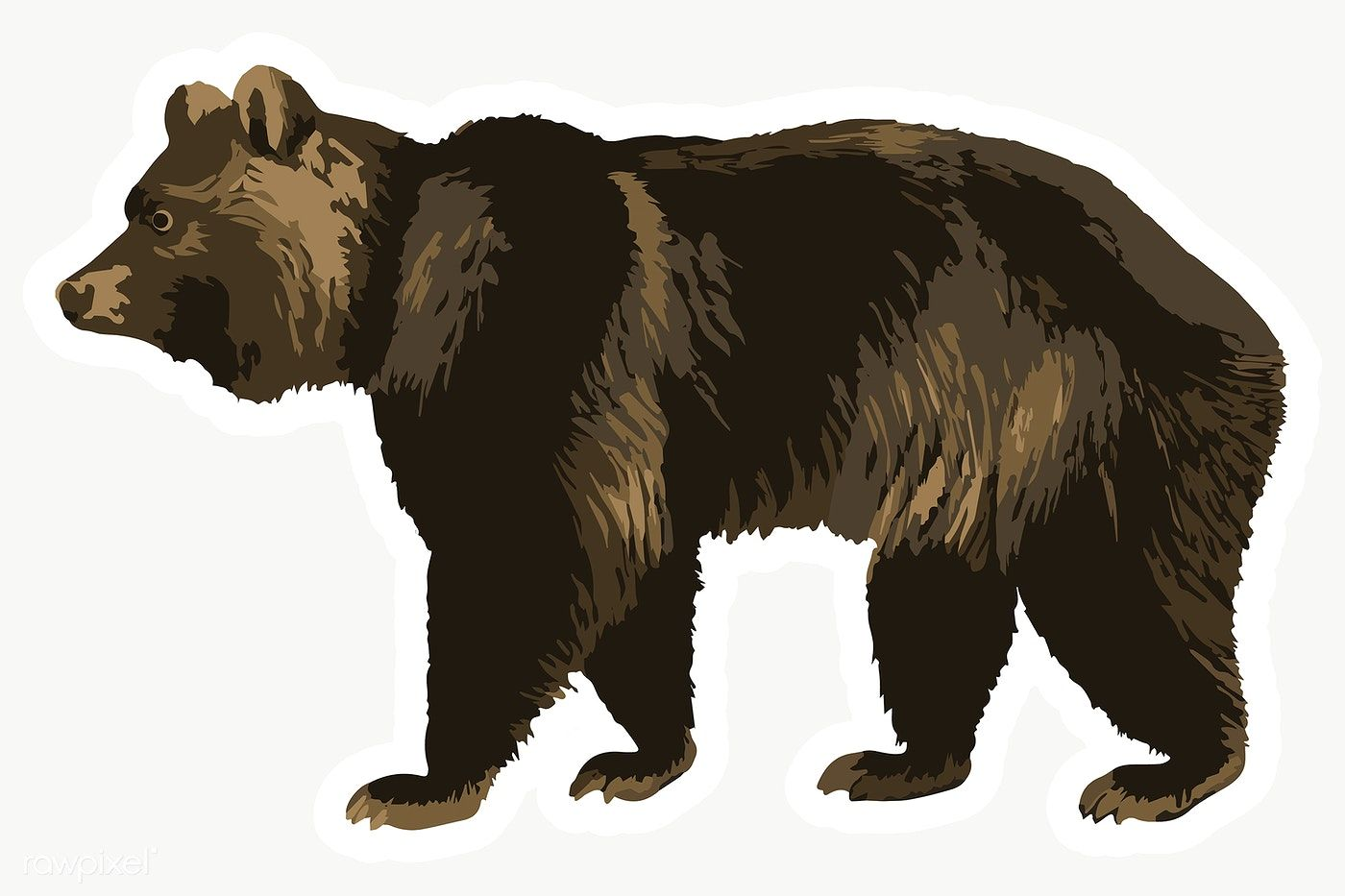 Vectorized Grizzly Bear Sticker Overlay Design Element Free Image By Rawpixel Com Aew Grizzly Bear Grizzly Animals Wild