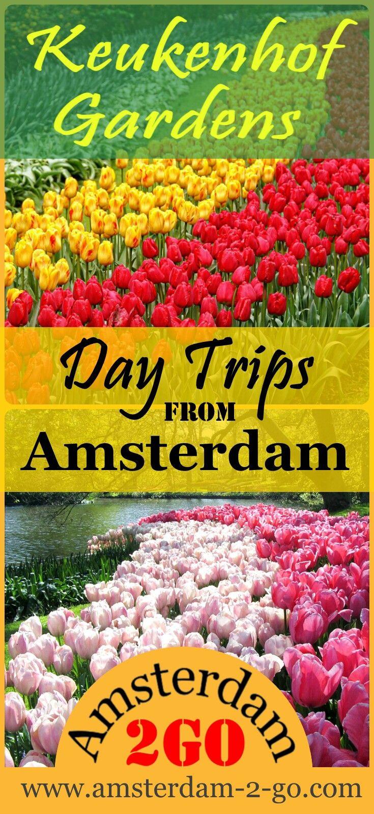 eadda93935d1f592b90633b150080ff4 - Tours From Amsterdam To Keukenhof Gardens