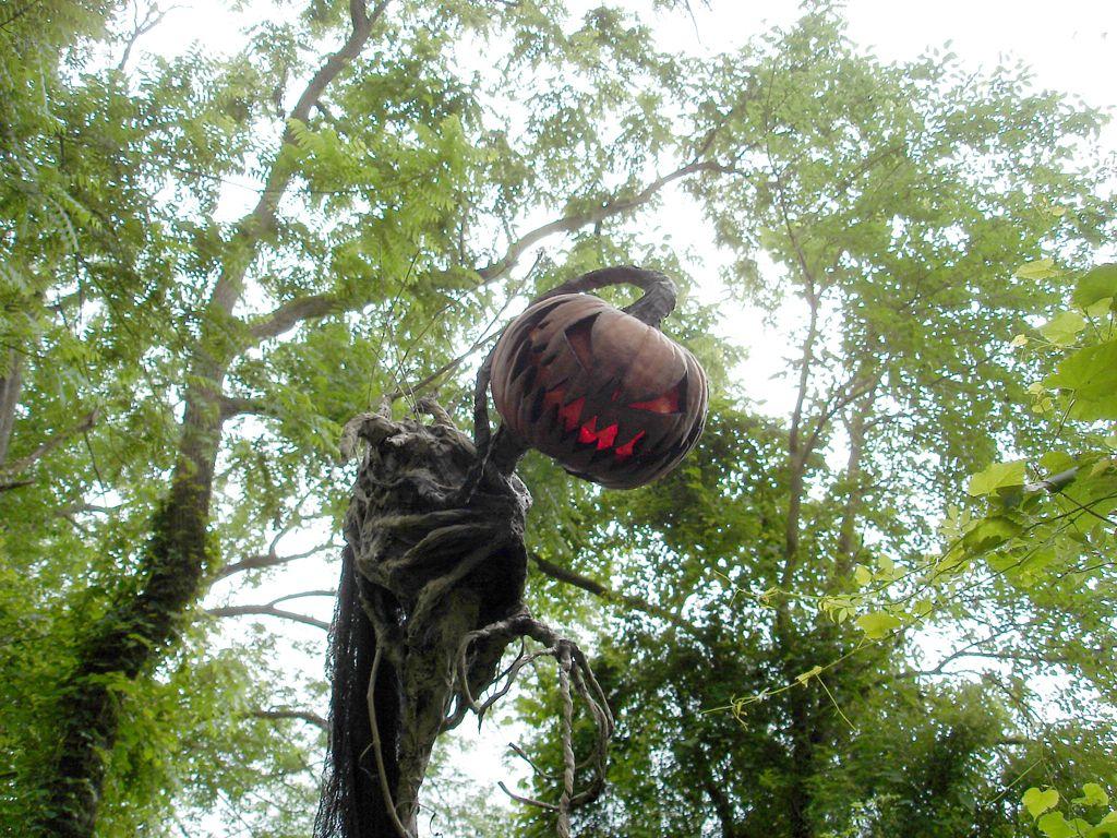 Scarecrow epouvantails et cie scarecrows halloween pumpkins pumpkin et scary pumpkin - Citrouille effrayante ...