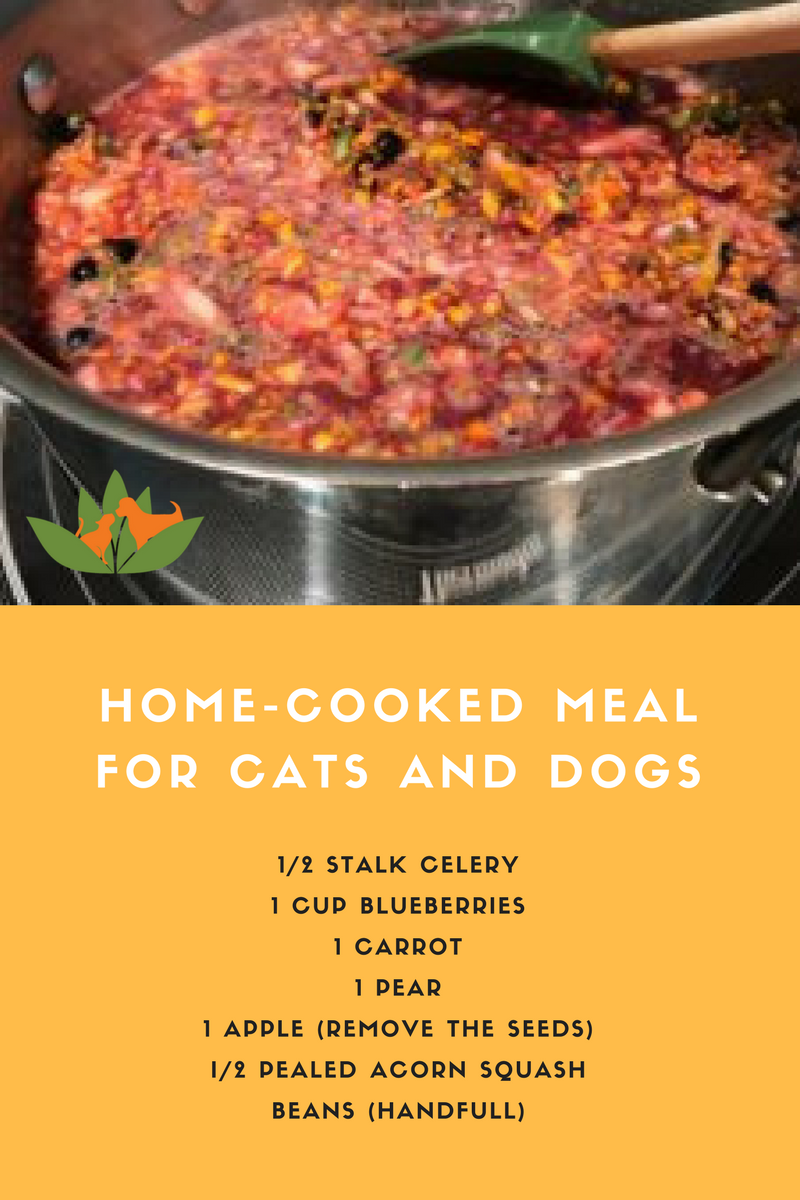 Home Cooked Pet Meals It S Easy Healthy Vegetarian Dog Food Recipe Dog Food Recipes Home Cooked Dog Food