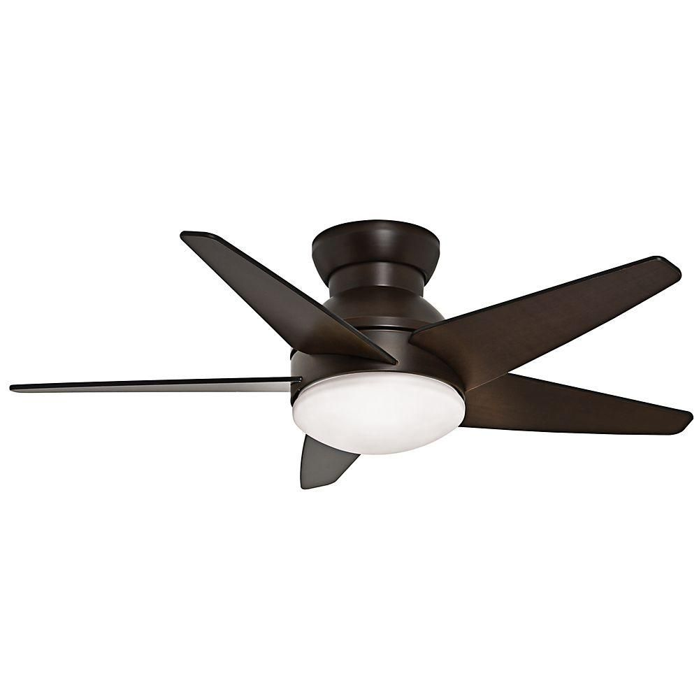 Casablanca isotope in indoor brushed cocoa bronze ceiling fan