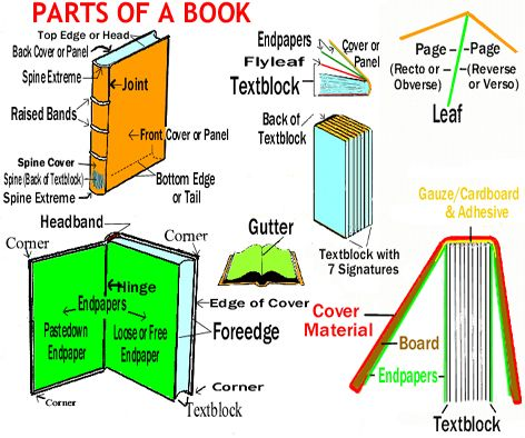eae059d68c905d69369d10cc94606ea7 did you know a book has various parts? let us know how many parts book parts diagram at suagrazia.org