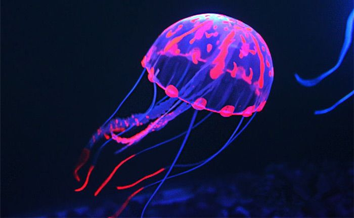 10cm Glowing Aquarium Artificial Jellyfish-$3.00