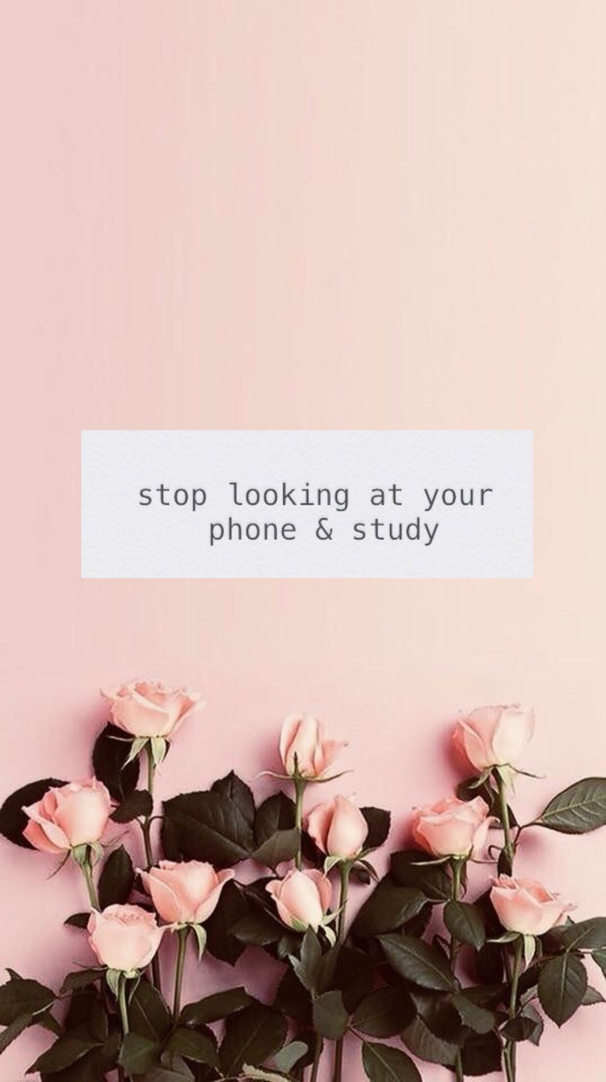 Study Motivation Wallpaper Study Inspiration Quotes Study Motivation Quotes Motivational Quotes Wallpaper