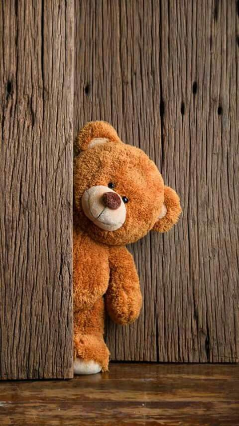 Peeking Around The Door Teddy Bear Wallpaper Bear Wallpaper Teddy Bear Images