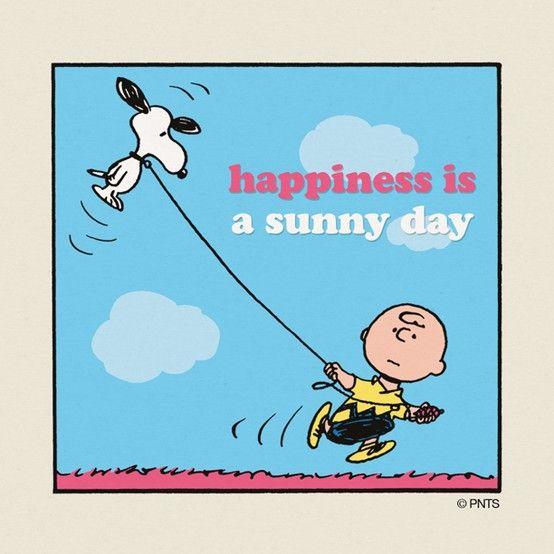 SNOOPY /& WOODSTOCK VINTAGE~PEANUTS~40 YEARS OF HAPPINESS~KITE~CHARLIE BROWN