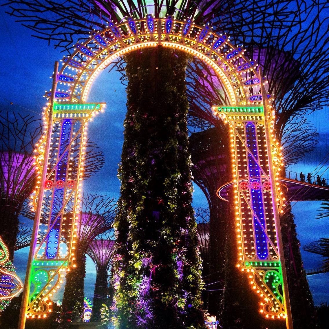 Christmas Wonderland in Singapore 2014 - Gardens by the Bay. | Gardens by the bay, Singapore