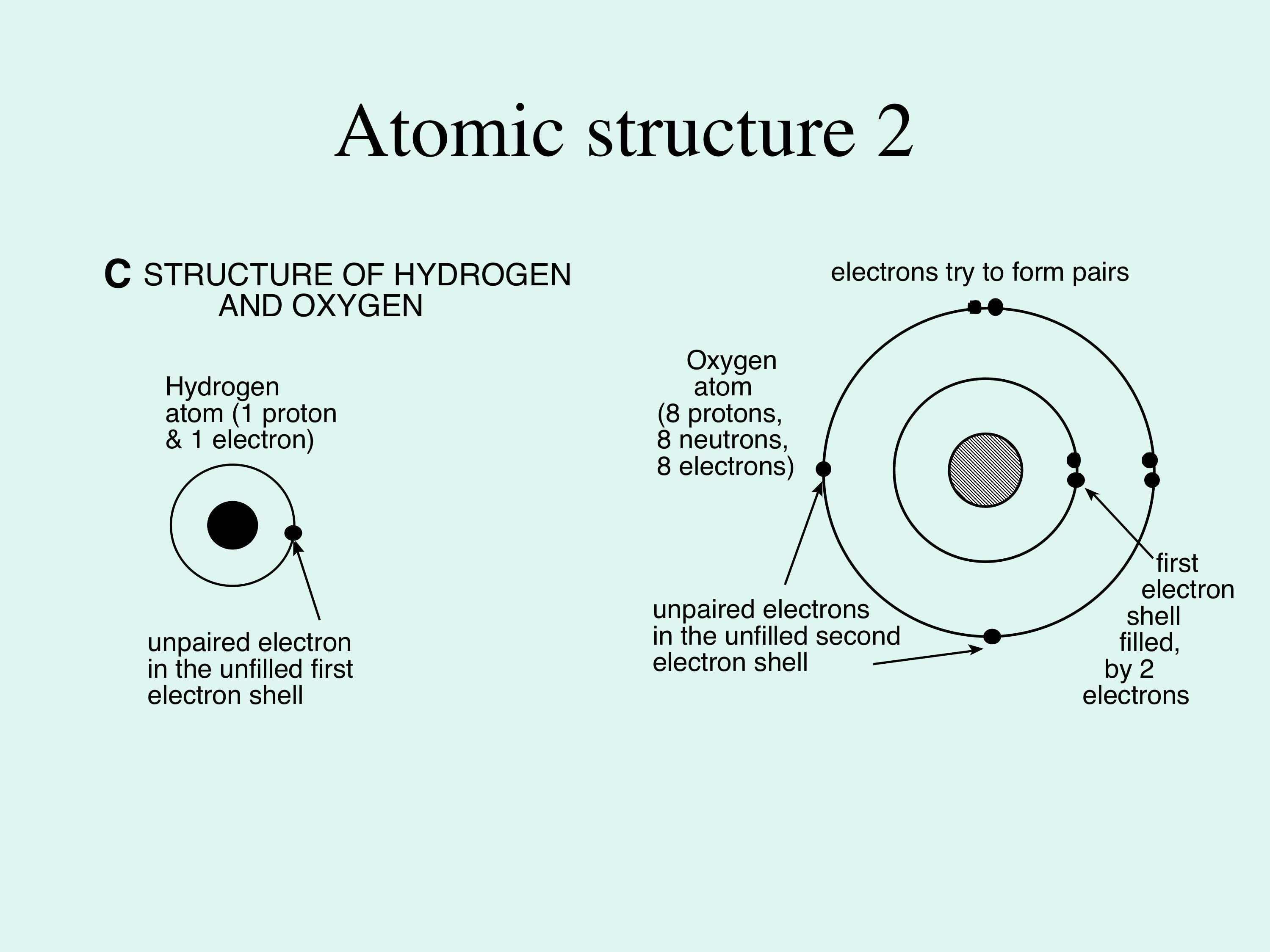Figure 1c This Shows The Atomic Structure Of Hydrogen And Oxygen In Each Case The Nucleus