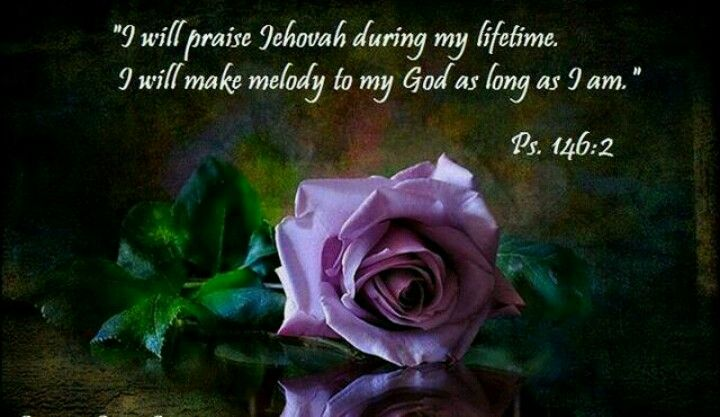 Psalms 146:2 I will praise Jehovah during my lifetime♥