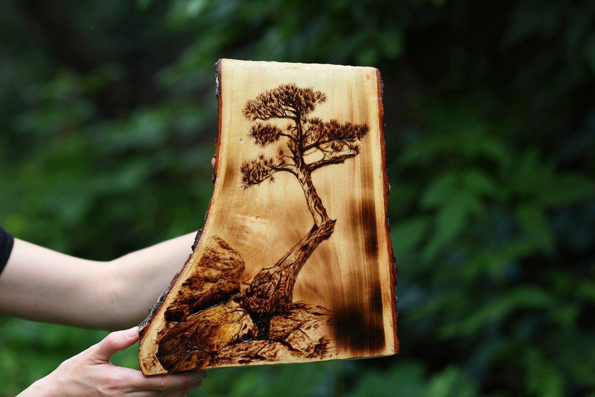 для детей работы по дереву фото перенесенное на дерево установки