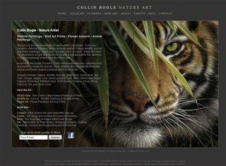 Best Artist Portfolio Websites | look best of artistic element ...