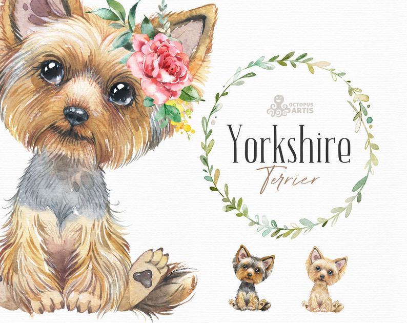 Yorkshire Terrier Watercolor Little Pet Clipart Yorkie Etsy In 2021 Yorkshire Terrier Baby Animal Nursery Clip Art